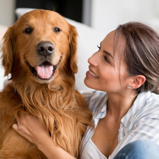 Grosser Hund sitzt neben Frau, die zu ihm schaut.