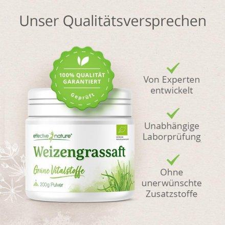 Weizengrassaft Pulver - Bio - 200g
