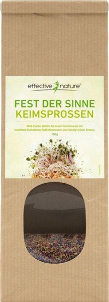 Sprossen Keimsaat Fest der Sinne - Alfalfa Rotkohl Kresse - Bio - 150g