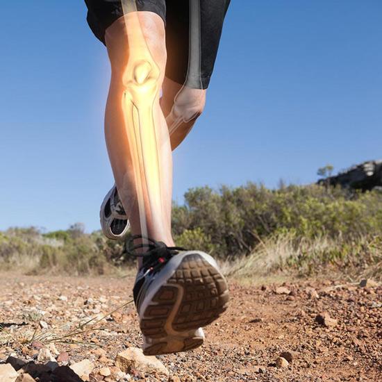 Querschnitt des Beins eines Joggers