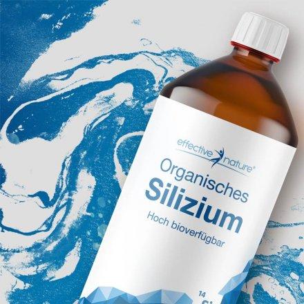 Organisches Silizium