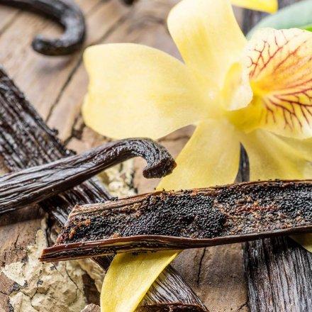 Süsslupine mit Bio-Vanille