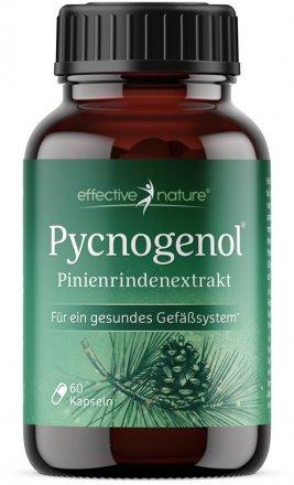 Pycnogenol® - Pinienrindenextrakt von effective nature