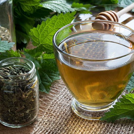 Brennnesselkraut-Tee