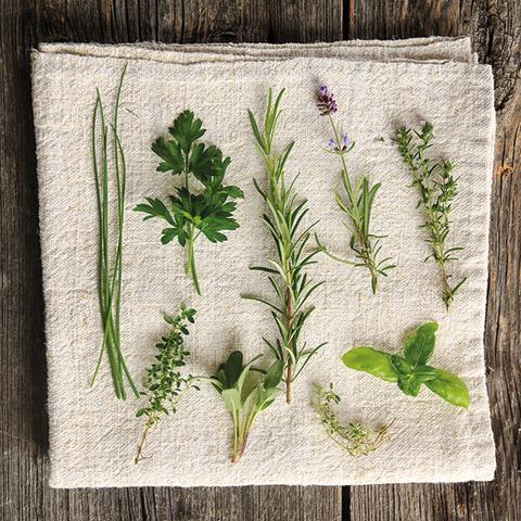 Different plants on a linen towel