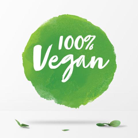 Zeichen 100% vegan
