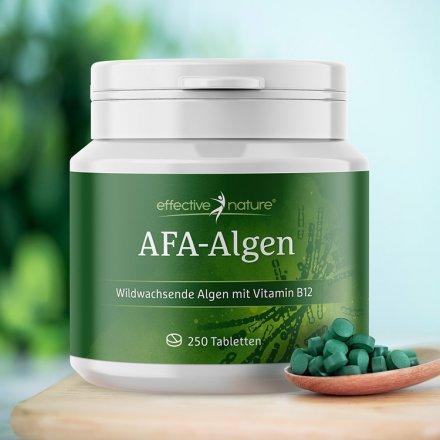AFA Algen - 400 Tabletten