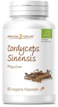 Cordyceps Pilz - 90 Kapseln - Bio