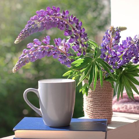 Kaffeetasse und Blumenstrauss aus Lupinen.