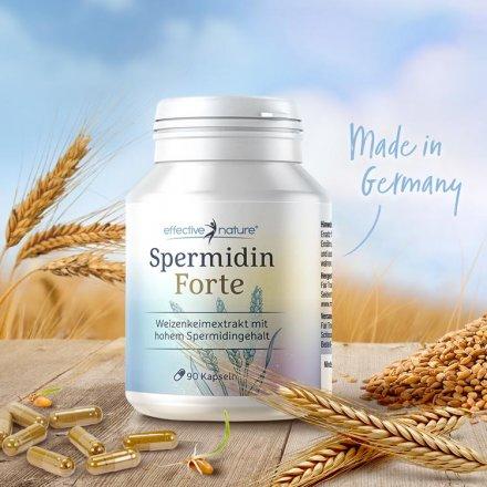 Spermidin Forte - Hochdosierter Weizenkeimextrakt