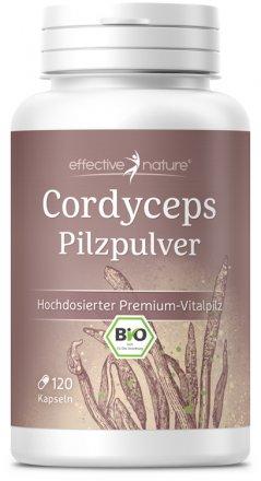 Cordyceps Bio-Pilz