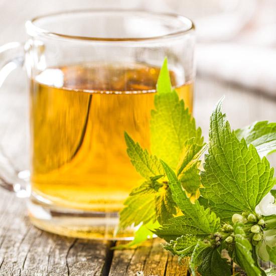 Brennnesselblätter-Tee
