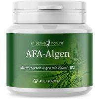 AFA Algen
