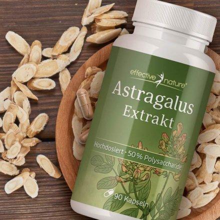 Astragalus-Extrakt