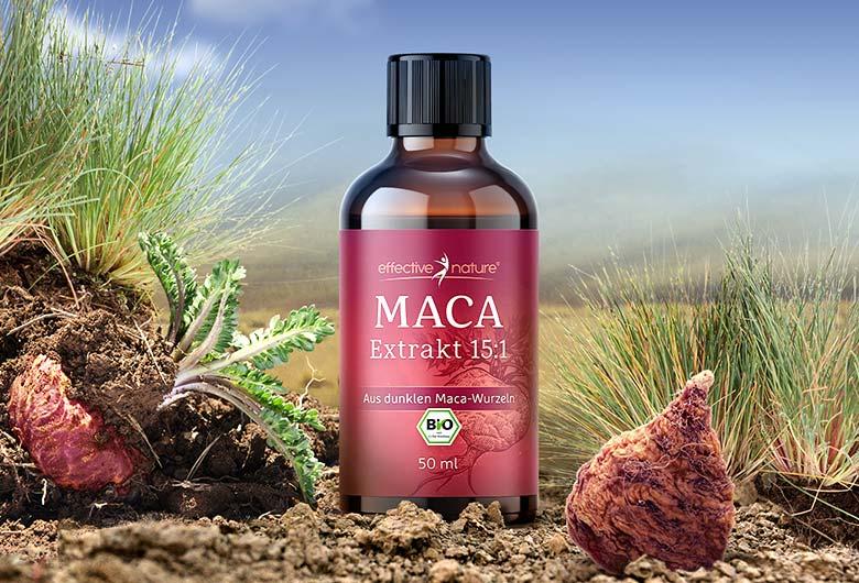 Maca-Extrakt von effective nature