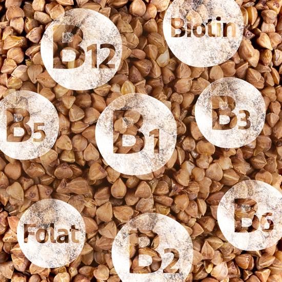Der Vitamin-B-Komplex