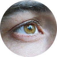 Augen und Sehvermögen