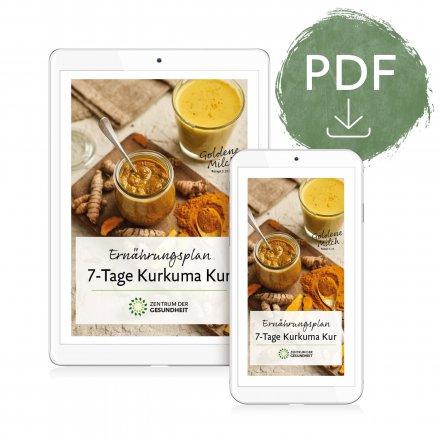Ernährungsplan Kurkuma - digital