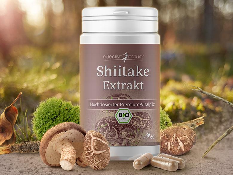 Shiitake-Extrakt von effective nature