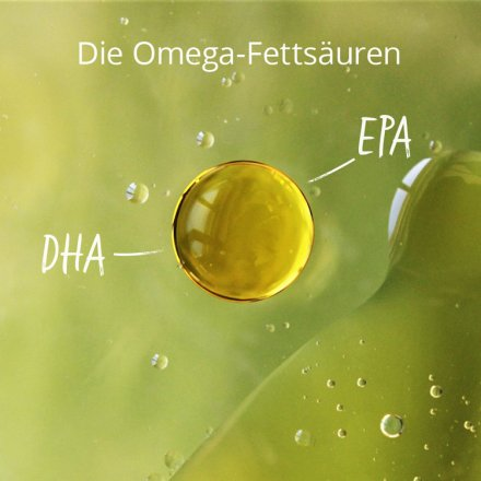 Omega-3 EPA & DHA from algae oil