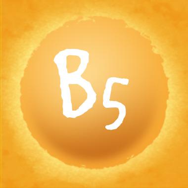 Pantothensäure (B5)