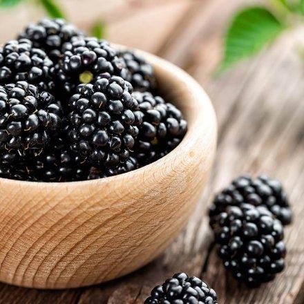 Crunchy Fruit Brombeeren gefriergetrocknet - Organica - Bio - 16g