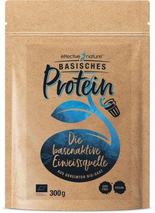 Basisches Protein