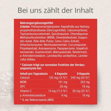 Darmkur Colon Activ mit effektiver Nährstoffkombination