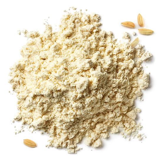 Reisproteinpulver und Reiskörner