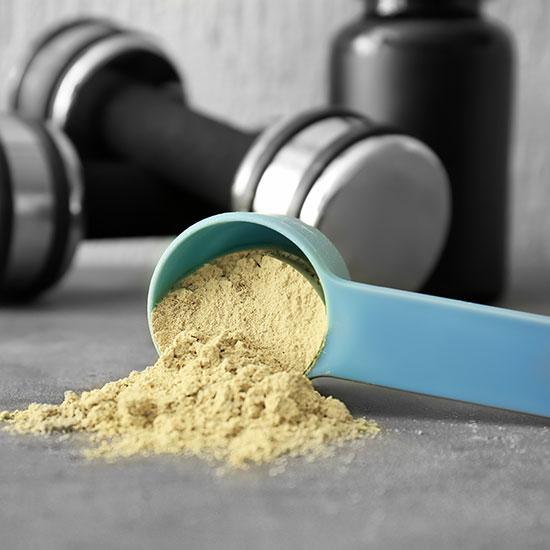 Hanfprotein für Proteinshake