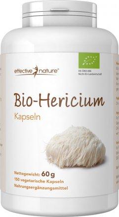 Pilzpulver Hericium erinaceus