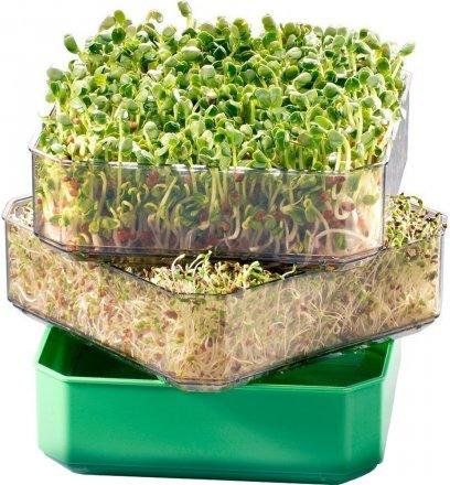 Keimgerät für Samen und Sprossen