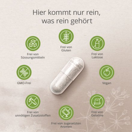 Calcium-Alge Litothamnium