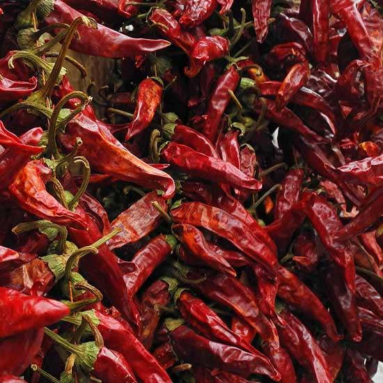 Ganze Chilis von Lebensbaum
