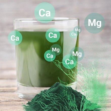 Spirulina Pulver Mineralstoffe