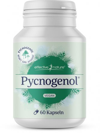 Pycnogenol - 60 Kapseln