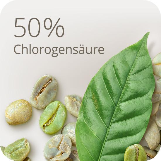 Mit 50% Chlorogensäure