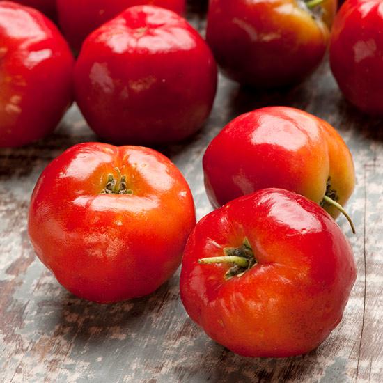 Acerolakirsche - die natürliche Vitamin-C-Quelle