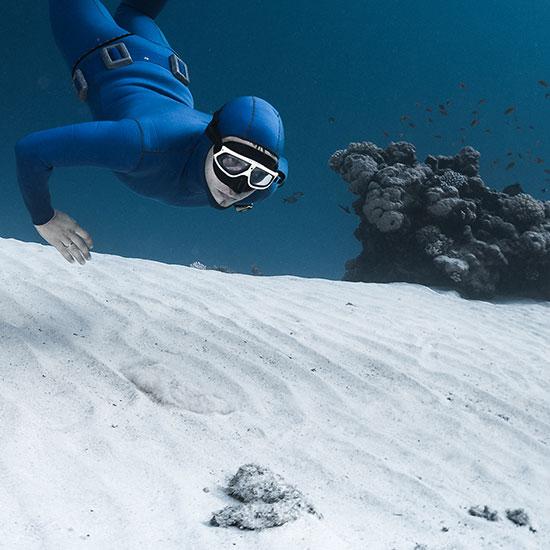 Taucher, der unter Wasser nach abgestorbenem Sango sucht.