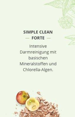 Banner Simple clean forte _ V2
