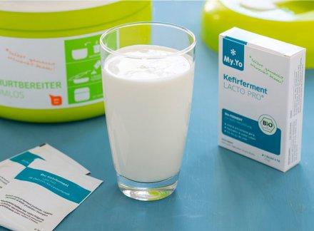 Kefirferment Probiotisch