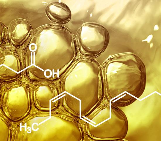 Hervorragende, pflanzliche Omega-3-Quelle