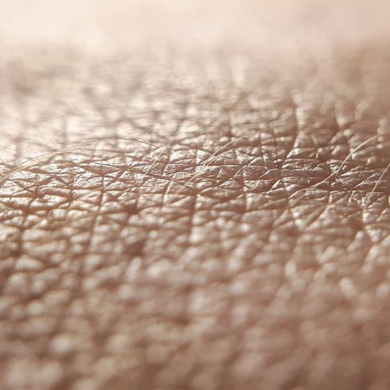 Nahaufnahme Haut