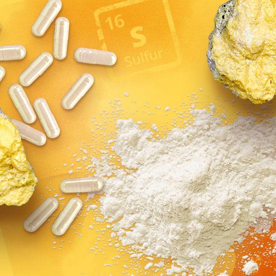 MSM Kapseln, MSM Tabletten und MSM Pulver