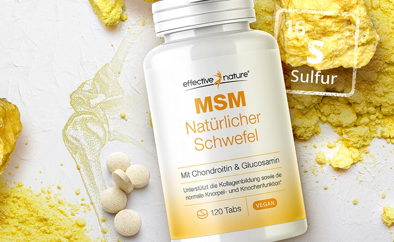 MSM Glucosamin & Chondroitin