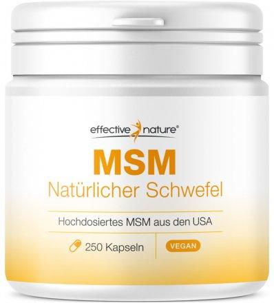 MSM Gel und Kapseln + Gratis-Buch