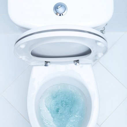 WC-Reiniger Minze-Myrthe - 750ml - Sonett