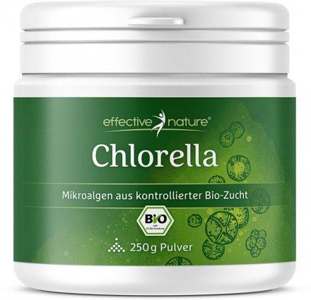 Chlorella-Pulver