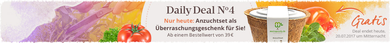 Daily Deal Nr.4